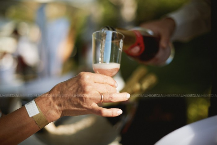 Au fost premiați profesioniști și companii din domeniul vitivinicol, de Ziua Națională a Vinului