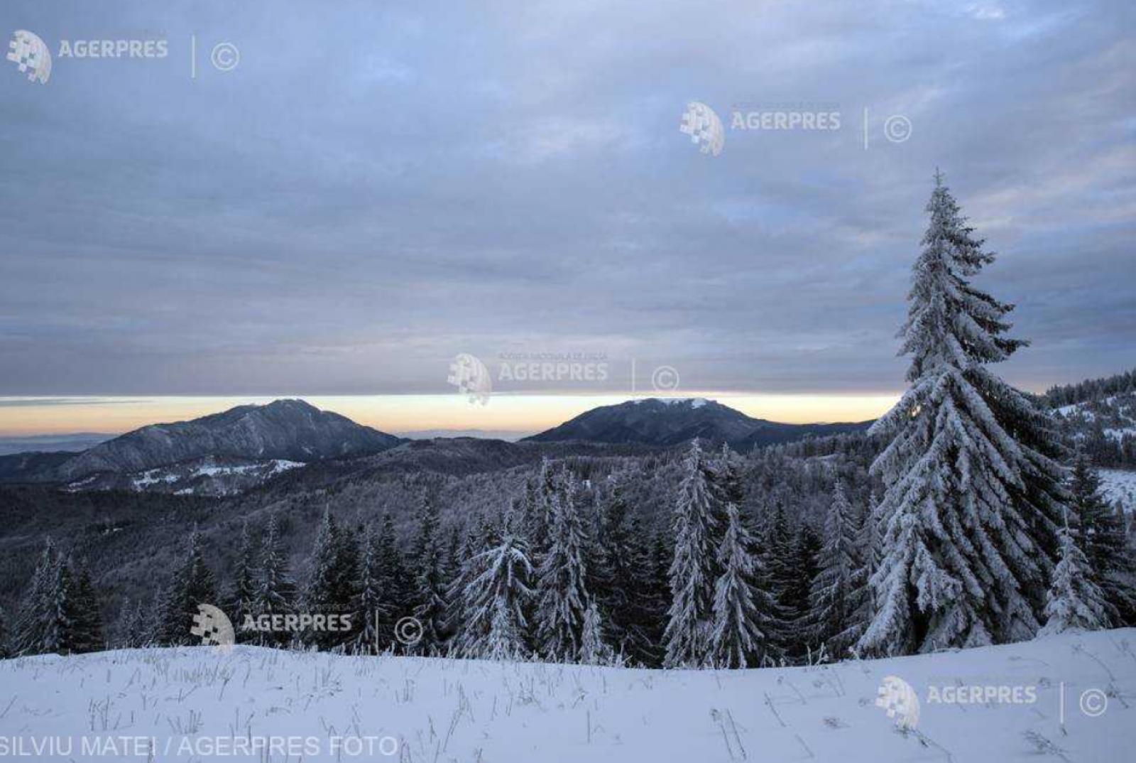 Braşov: Turist din Republica Moldova, salvat de jandarmii montani după ce s-a rătăcit în Masivul Postăvarul