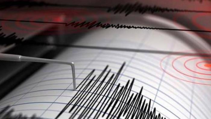 Cutremur de 5,6 grade, înregistrat în această dimineață