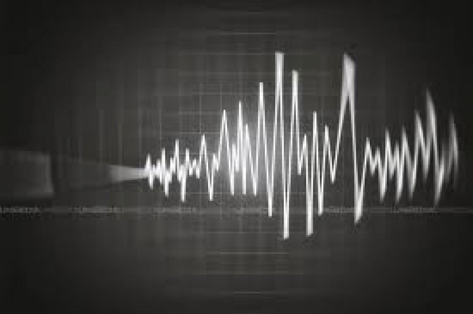 Cutremur în munții Vrancea. S-a simțit și la Chișinău