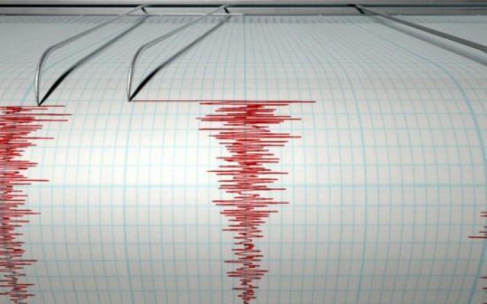 Două cutremure de 3,3 2,5 grade pe scara Richter au avut loc în această dimineață în județul Vrancea