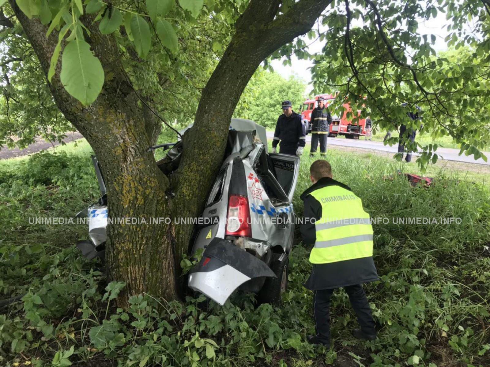 (foto) Impact devastator în Hâncești: O persoană a decedat după ce un taximetrist beat a intrat într-un copac