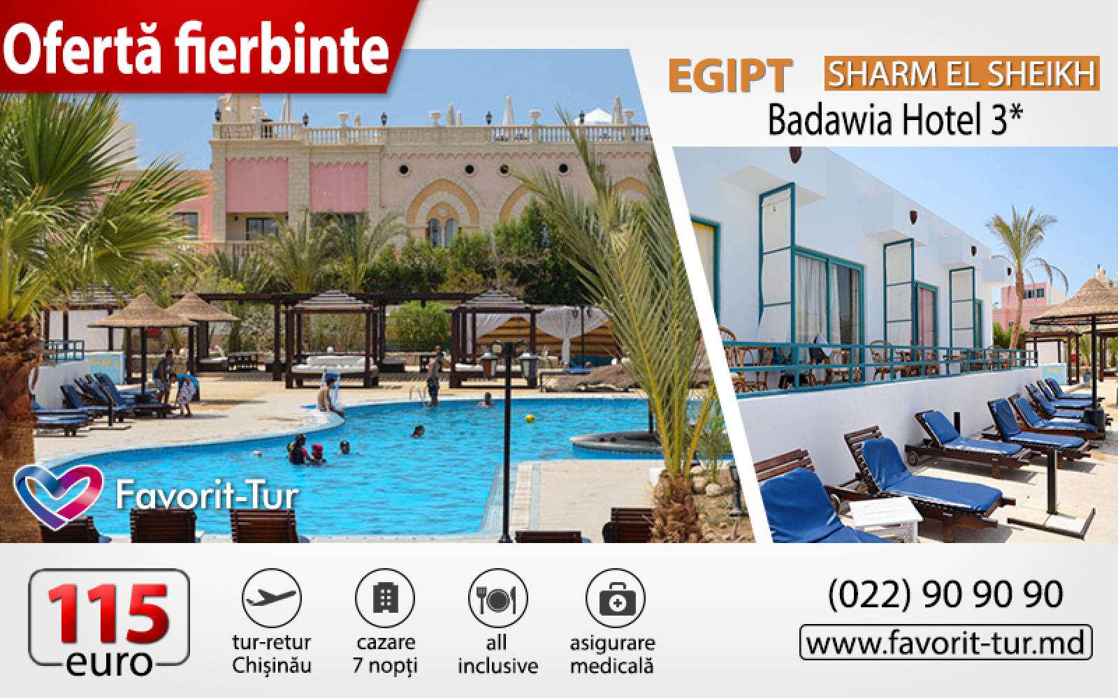 (foto) Oferte fierbinți de la Favorit-Tur: Vacanță de 7 zile în Egipt, de la 115 euro!
