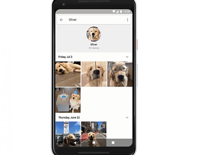 Google Photos extinde funcţia de recunoaştere facială, asigurând şi identificarea animalelor de companie