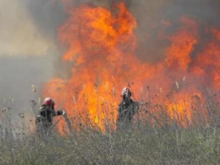 Gunoiștea de lângă Trușeni, cuprinsă de flăcări. A ars un hectar de gunoi