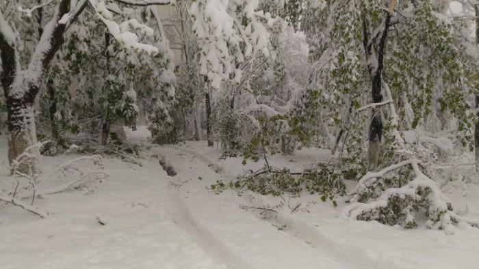 Igor Dodon, despre ninsorile abundente din țară: Dacă va fi necesar, sunt pregătit să decretăm stare de situație excepțională