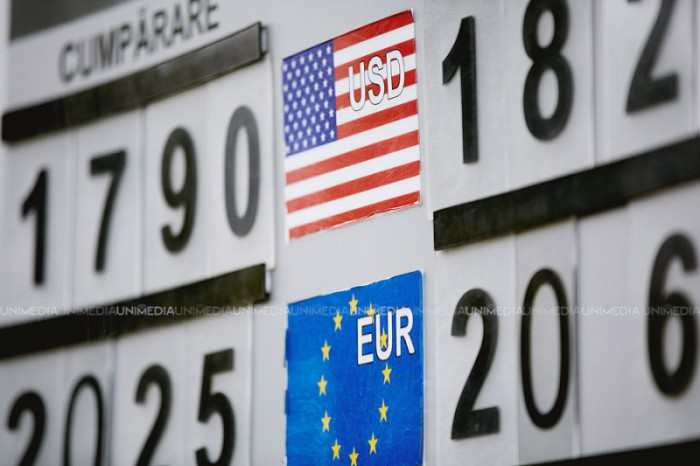 Leul pierde teren în raport cu principalele valute de referinţă. Cursul afișat de BNM