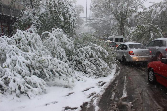 (video) Consecințele stihiei: 86 de automobile, deteriorate de copacii căzuți, iar 140 de localități au rămas fără energie electrică