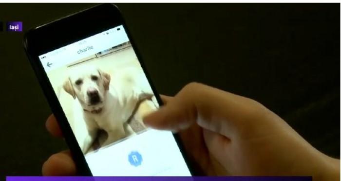 O nouă aplicație îți poate găsi câinele pe care l-ai pierdut