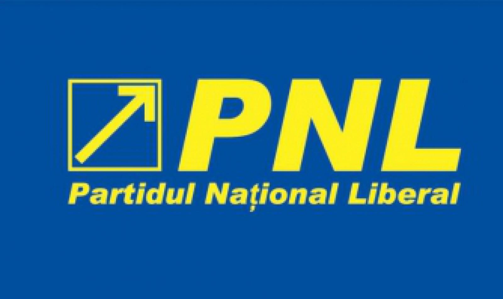 """PNL împlinește 11 ani. Vitalia Pavlicenco: """"Am lăsat o urmă, care, acum, devine pârtie"""""""