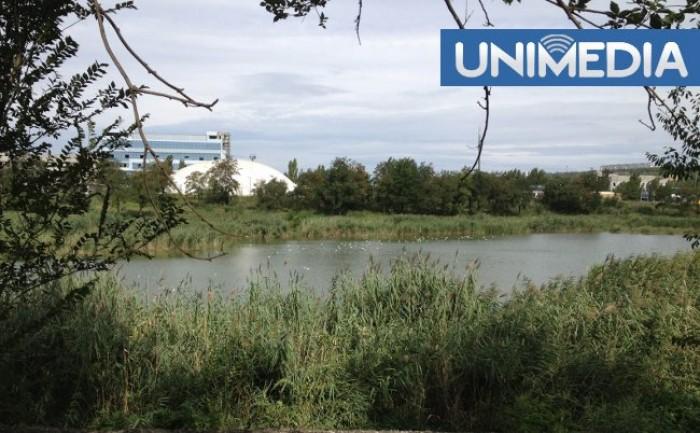 Problemele de la lacul din strada Albișoara se repetă: Locatarii din zonă, indignați de mirosul neplăcut