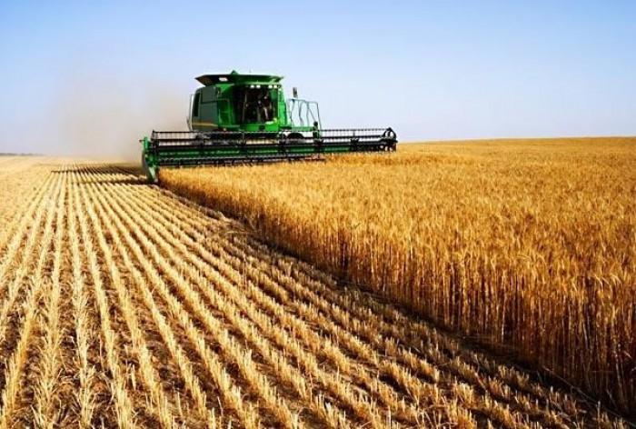 Promo-Lex: Republica Moldova riscă să piardă peste 260 de mii de hectare de pământ arabil