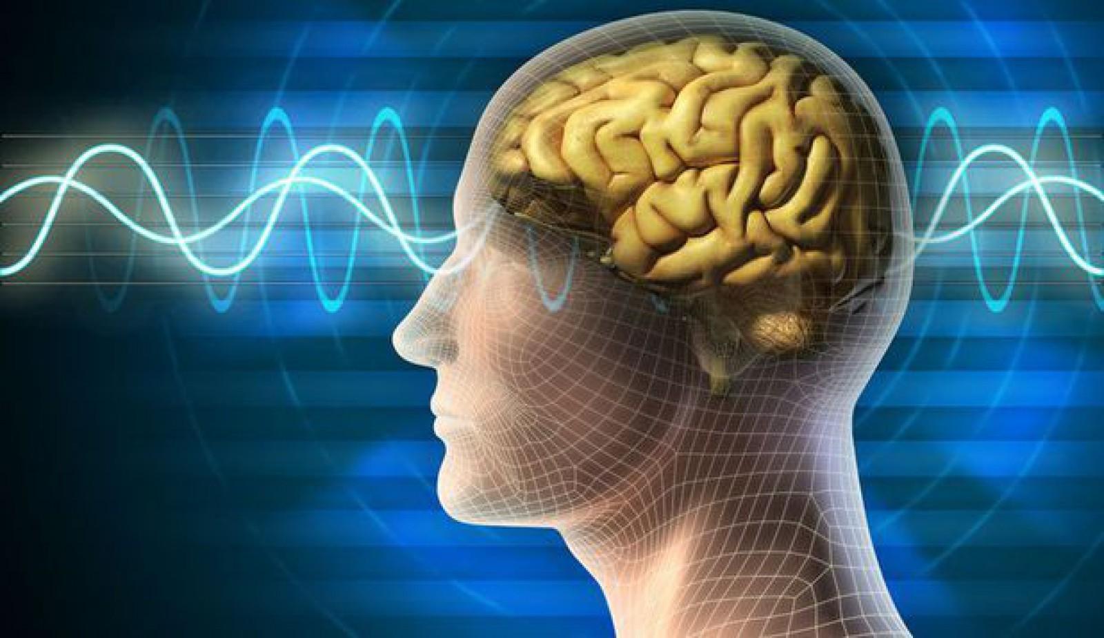 Studiu: Modurile în care îţi poţi menţine creierul tânăr