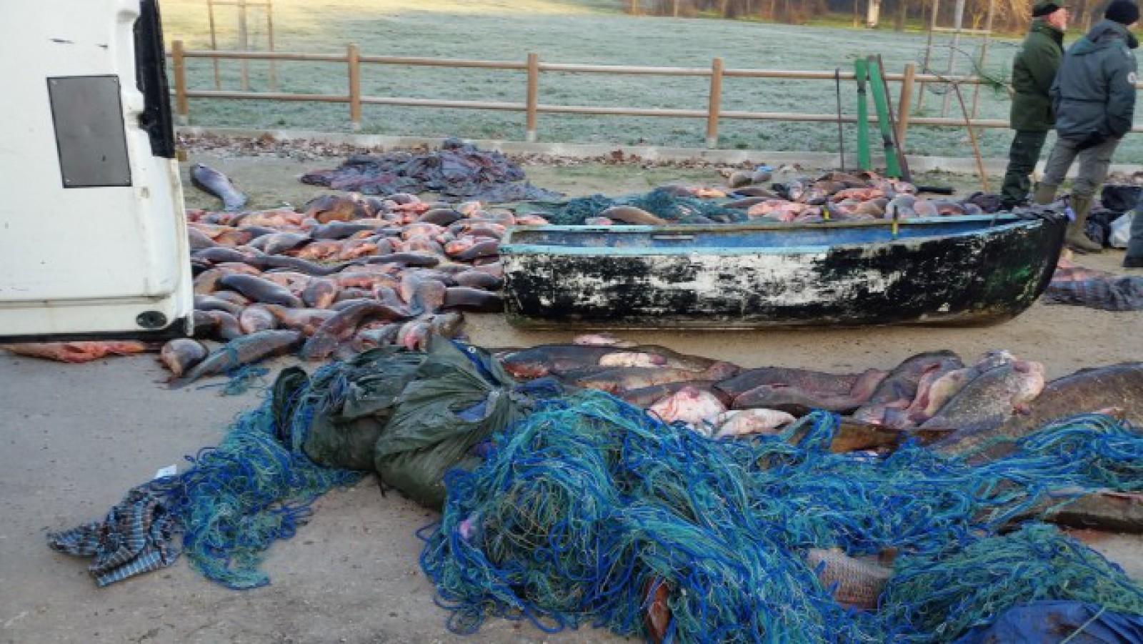Trei români au golit de pește un lac, dintr-o regiune protejată din Italia: Au prins peste trei tone de pește