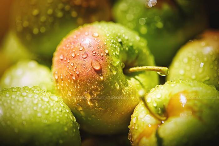 Veste bună pentru agricultori: Exportul de fructe în UE ar putea crește considerabil