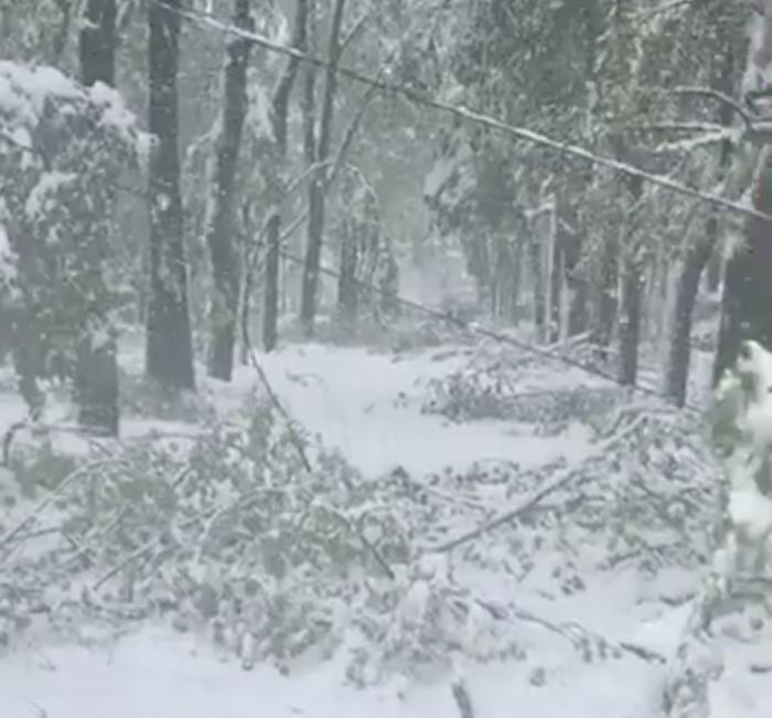 (video) Imaginile dezastrului din Chișinău. Cum a arătat un drum de la Botanica spre Centrul capitalei în cea mai grea zi a Primăverii