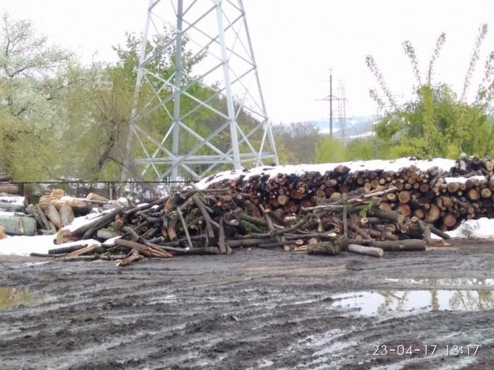 (galerie foto) Cum arată depozitul unde au fost aduse crengile și copacii distruși de ninsoarea din mijlocul lui aprilie