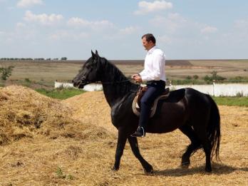 PL și PD: Alegerea președintelui trebuie discutată în interiorul AIE, nu la călărie