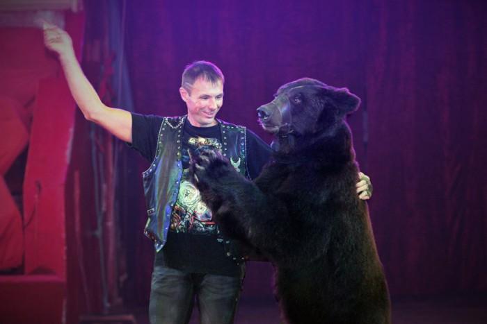 (video/foto) Circul din Chișinău invită la spectacol. Ce surprize vor fi
