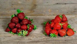 Beneficiile pe care le poţi obţine în urma consumului de căpsuni