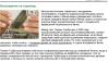 Gherman Gorbuntov și istoria încurcată în care a ajuns Universalbank