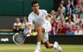 Novak Djokovic s-a calificat, după două zile, în sferturile turneului de la Wimbledon