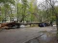 Pagubele ploilor şi vântului puternic din weekend: 29 de arbori au căzut, iar 6 automobile au fost deteriorate