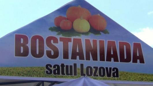(video) Festivalul Bostaniada la cea de-a doua ediție