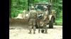 Au luat lopețile în mâini și s-au apucat de lucru. Militarii americani repară drumurile din Moldova