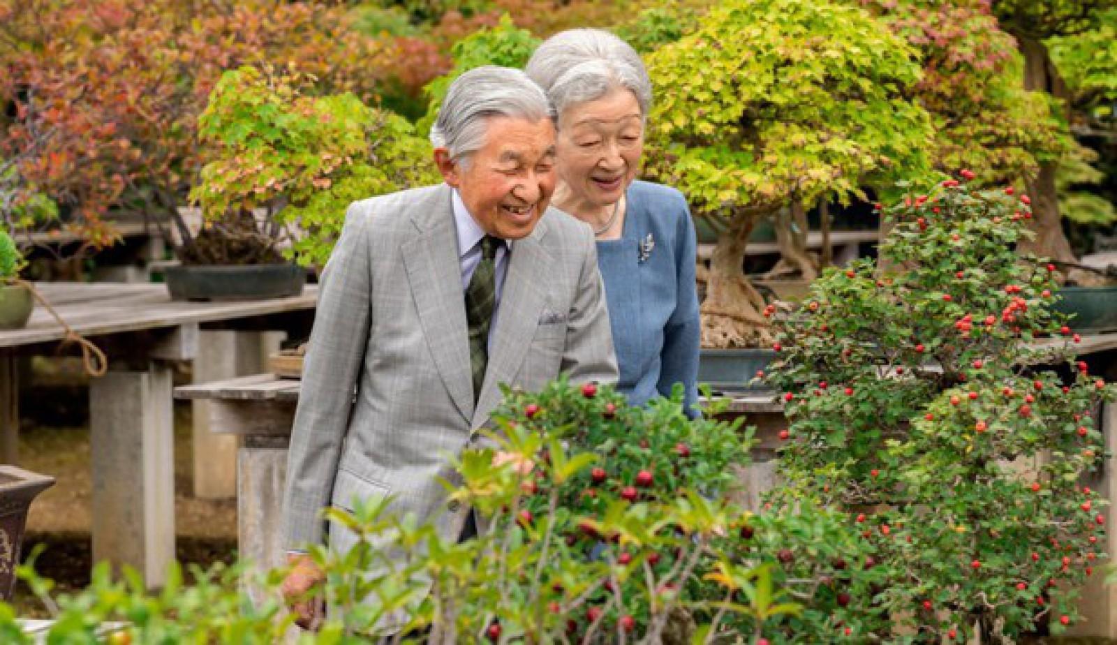 Împăratul Akihito al Japoniei, în vârstă de 84 de ani, a fost diagnosticat cu anemie cerebrală