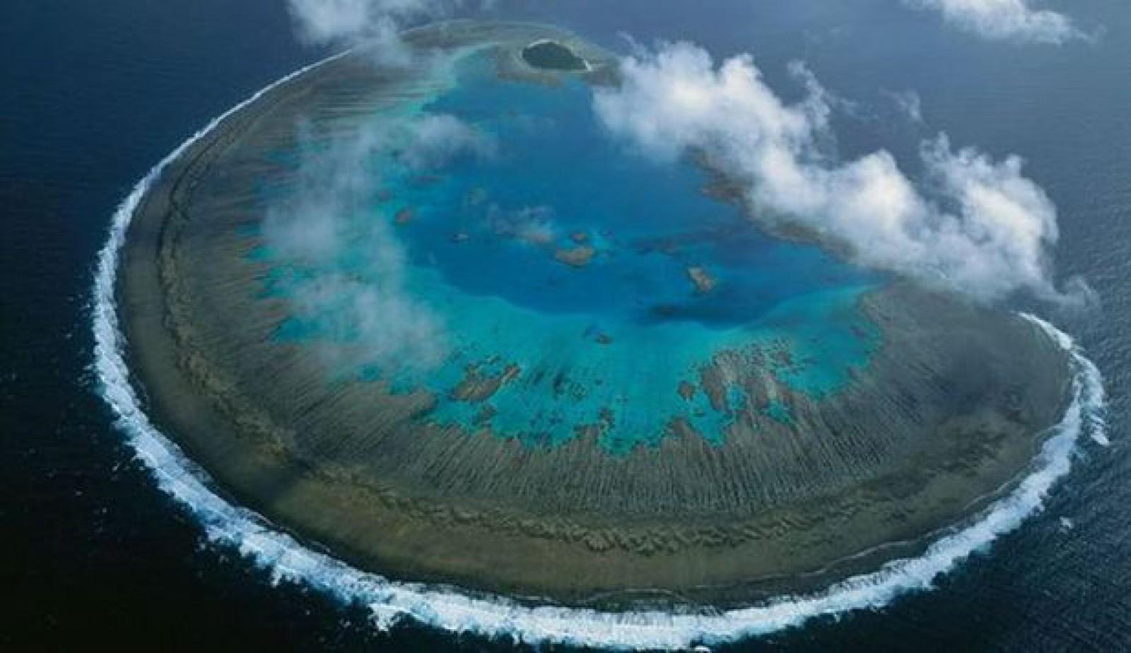 Australia investeşte jumătate de milion de dolari pentru salvarea Marii Bariere de Corali