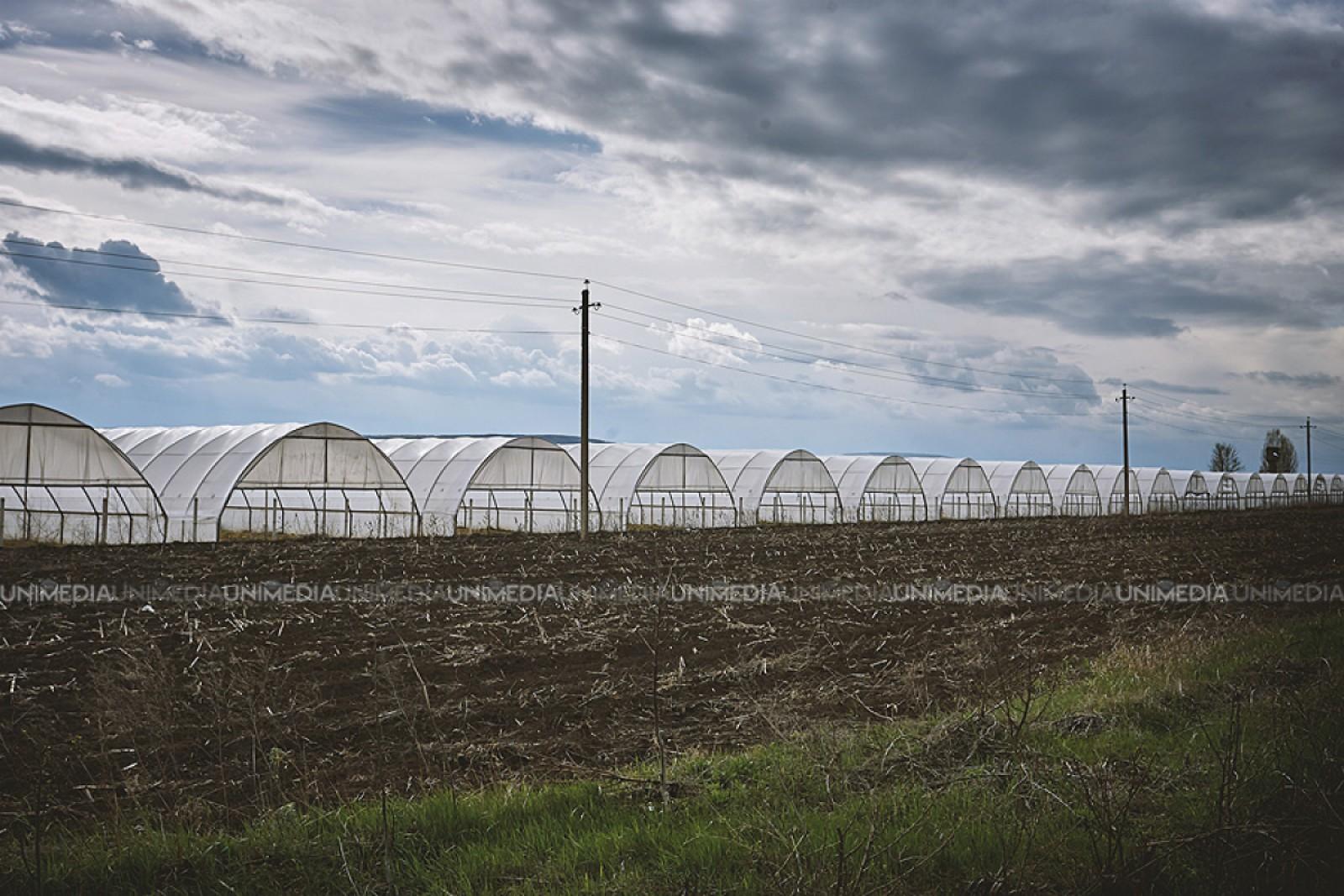 Condiții mai simple pentru irigarea terenurilor: Agricultorii vor obține mai ușor acces la apele de suprafață