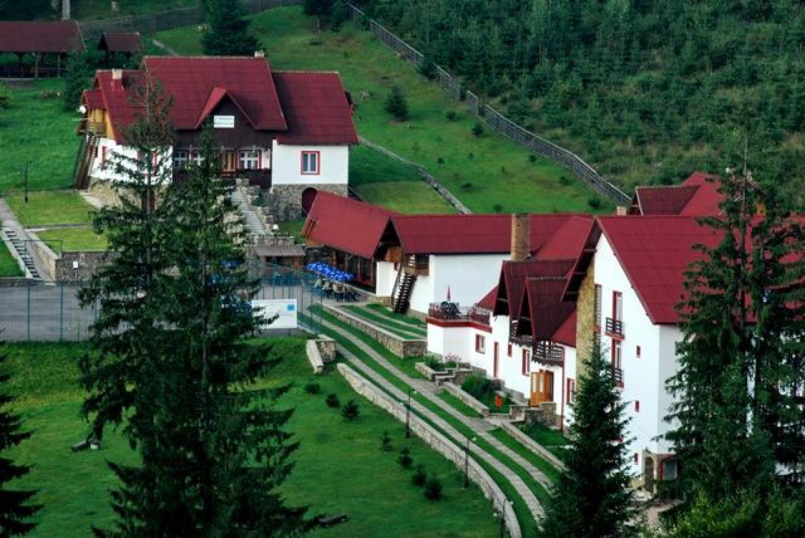 Cum cumnata președintei raionul Rezina și-a cumpărat o vilă în Carpați și în același timp să facă donații PD-ului