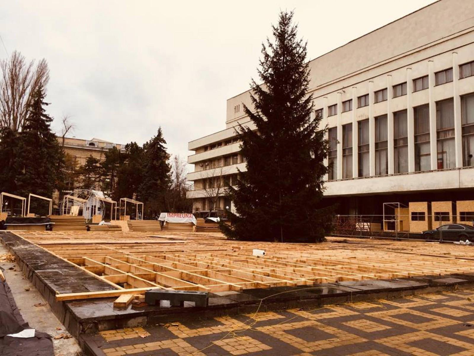 (foto) Pregătirile de sărbători de pe 31 August, aproape gata: Cel de-al doilea brad de Crăciun a fost instalat
