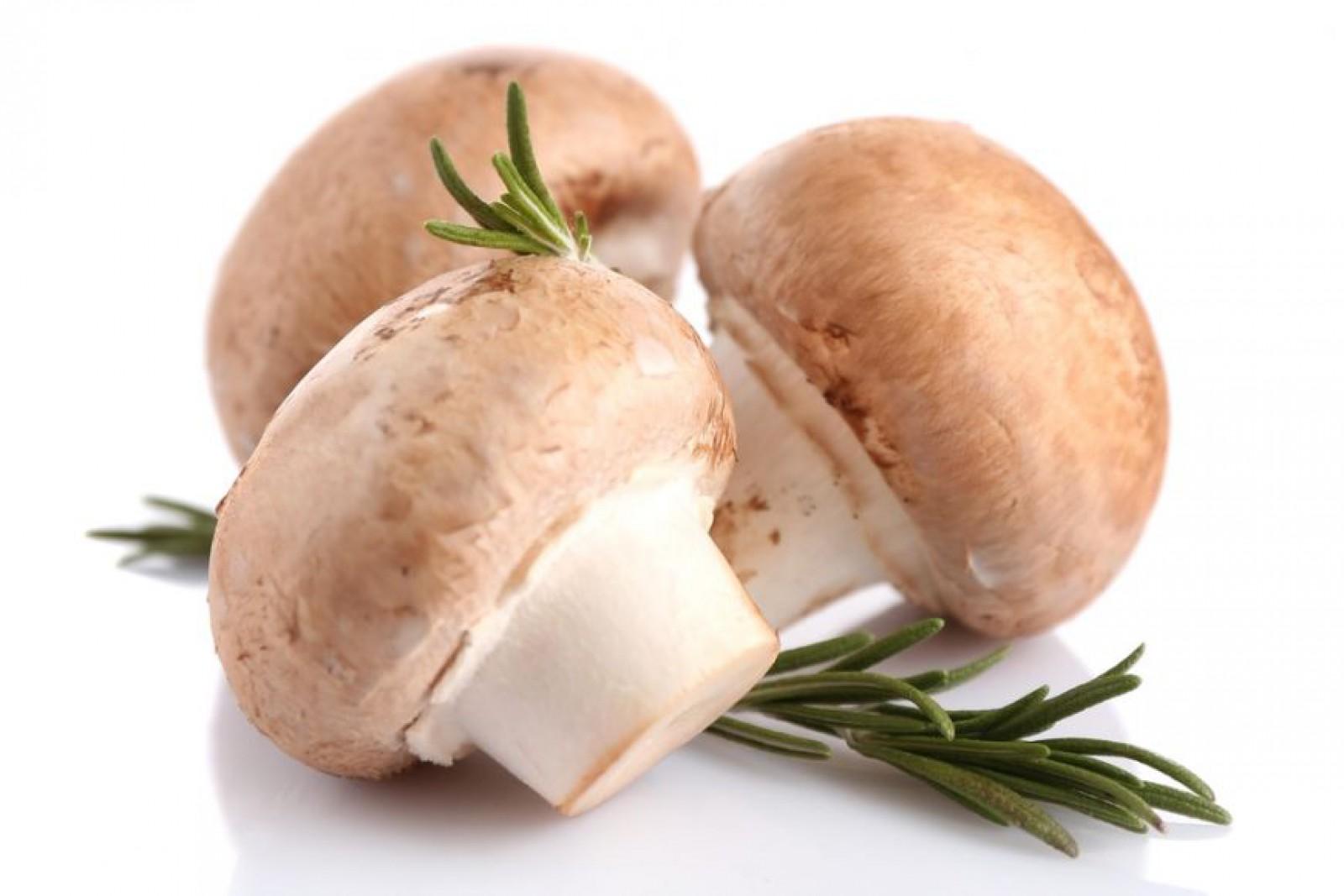 Ministerul Sănătății atenționează: A crescut numărul intoxicărilor cu ciuperci