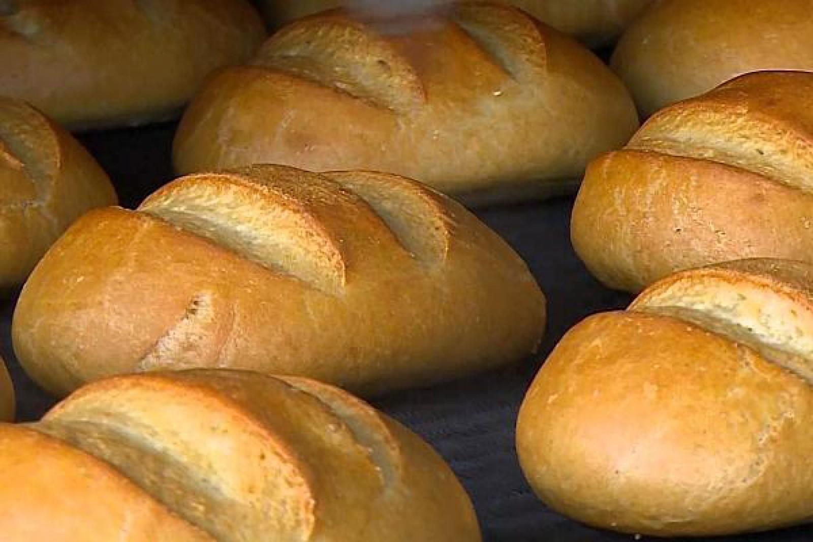 Mold-street: Cel mai mare producător de pâine din Republica Moldova are interdicție de a participa la licitațiile de achiziții publice