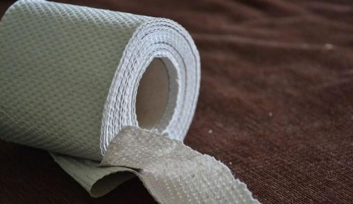Motivul pentru care nu ar trebui să mai folosim hârtie igienică