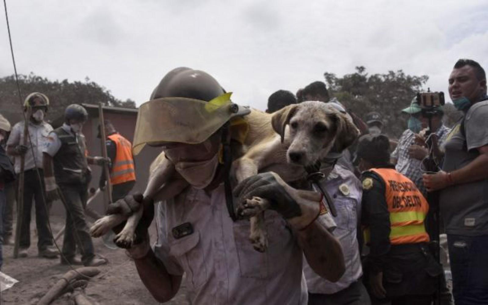 (video) O nouă erupţie a vulcanului Fuego din Guatemala: Aproape 200 de persoane dispărute şi 75 decedate