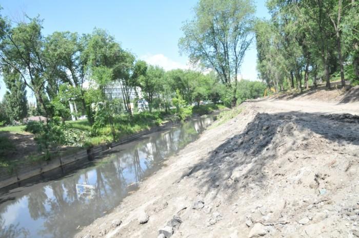 Curățarea râului Bîc, în vizorul Inspectoratul Ecologic: Primarul face populism