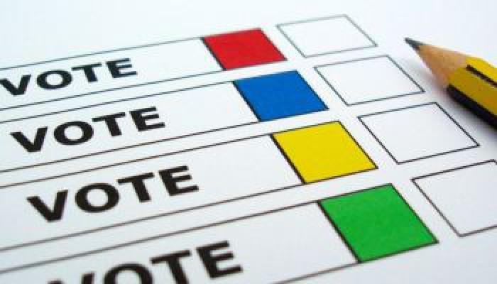 Ciocan: Nu vor fi exit-poll-uri pe 30 noiembrie