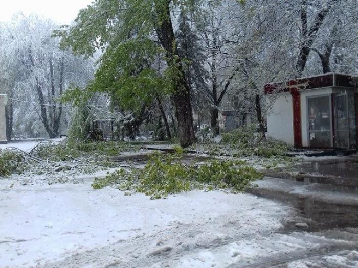 (foto) Reacția Primăriei Chișinău la ninsoarea din mijlocul primăverii