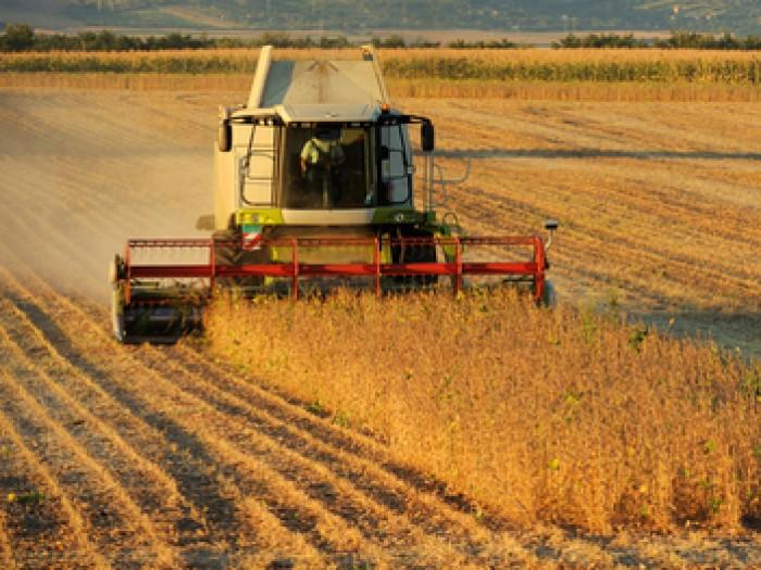 Ministerul Agriculturii ia măsuri de asigurare a securităţii alimentare a ţării