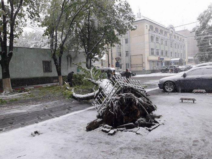 (update) Situația în Chișinău la ora 16:00: Mai multe străzi au fost închise, iar peste 520 de copaci au fost rupți