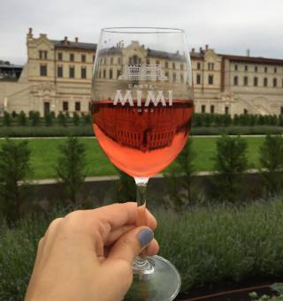 Muzică vie și atmosferă plăcută: Celebrăm împreună Vinul Rosé la Castel Mimi