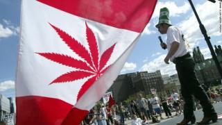 Senatul Canadei a aprobat folosirea canabisului în scop de recreere